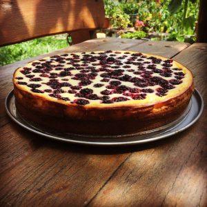makovo tvarohová torta